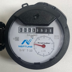 Neptune smart meter analog website